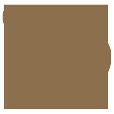 Declaration Gin logo